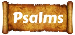 OpenScroll16Psalms