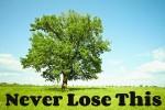 never-lose-300x200