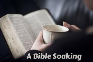BibleMug2